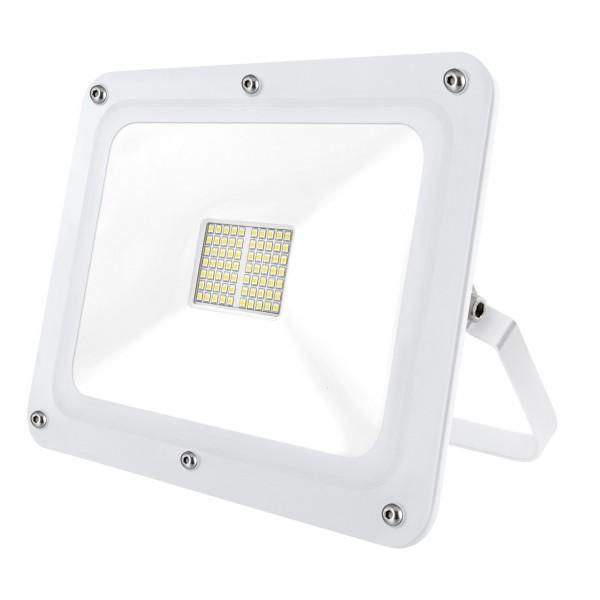 Proyector led blanco 100w.neutra